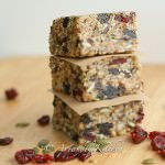 Homemade Fuel to Go Protein Bars