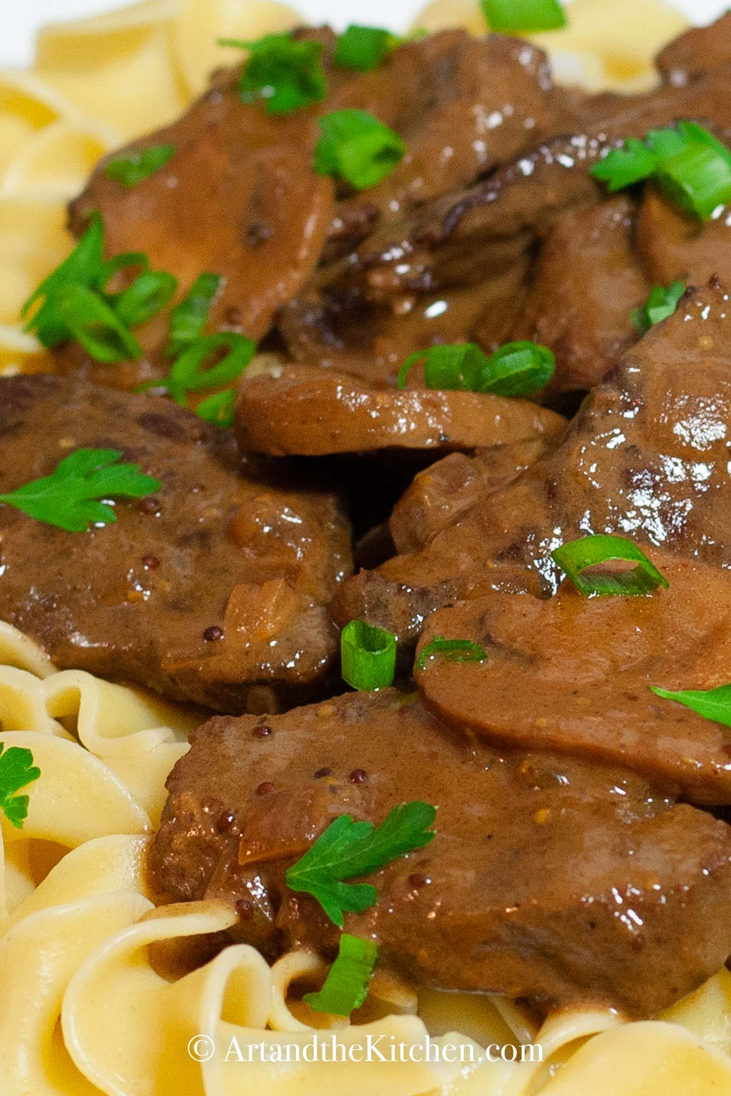 Beef stroganoff on bed of broad noodles, garnished with green onions.