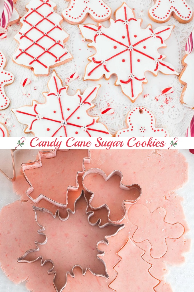 Candy Cane Sugar Cookies