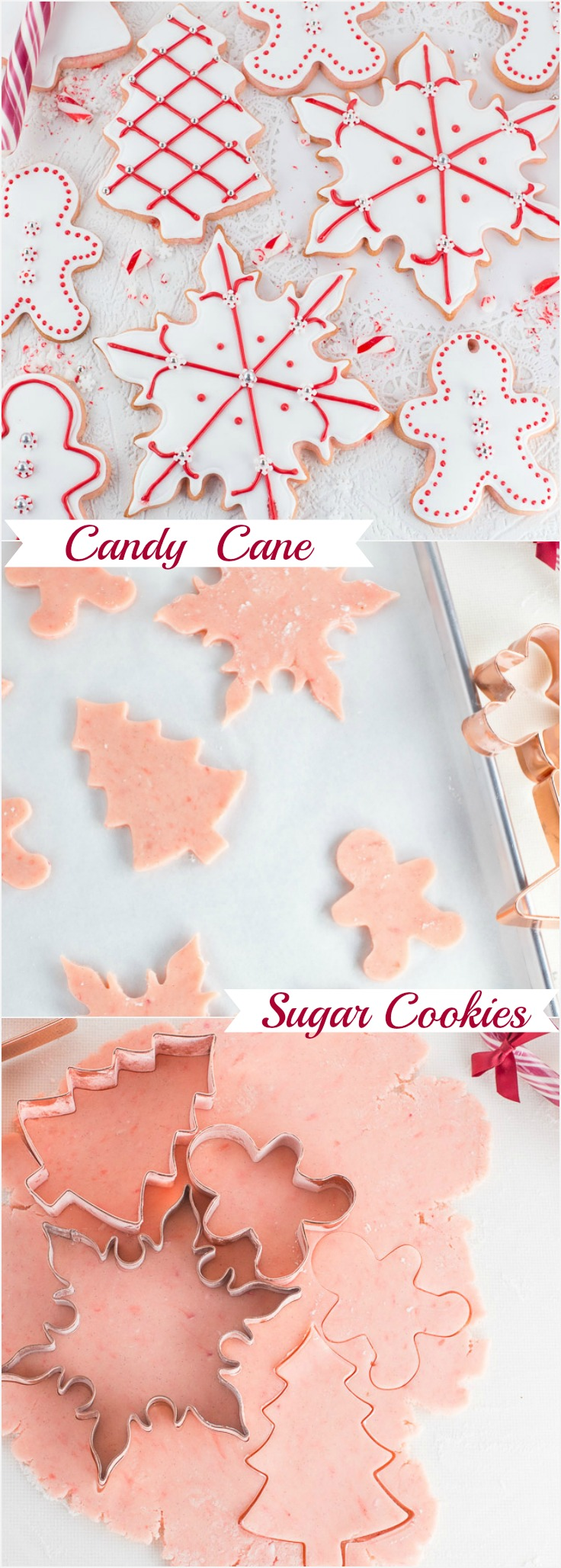 Candy Cane Sugar Cookies Art And The Kitchen