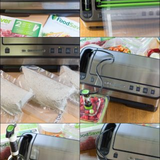 FoodSaver 2-In-1 Review