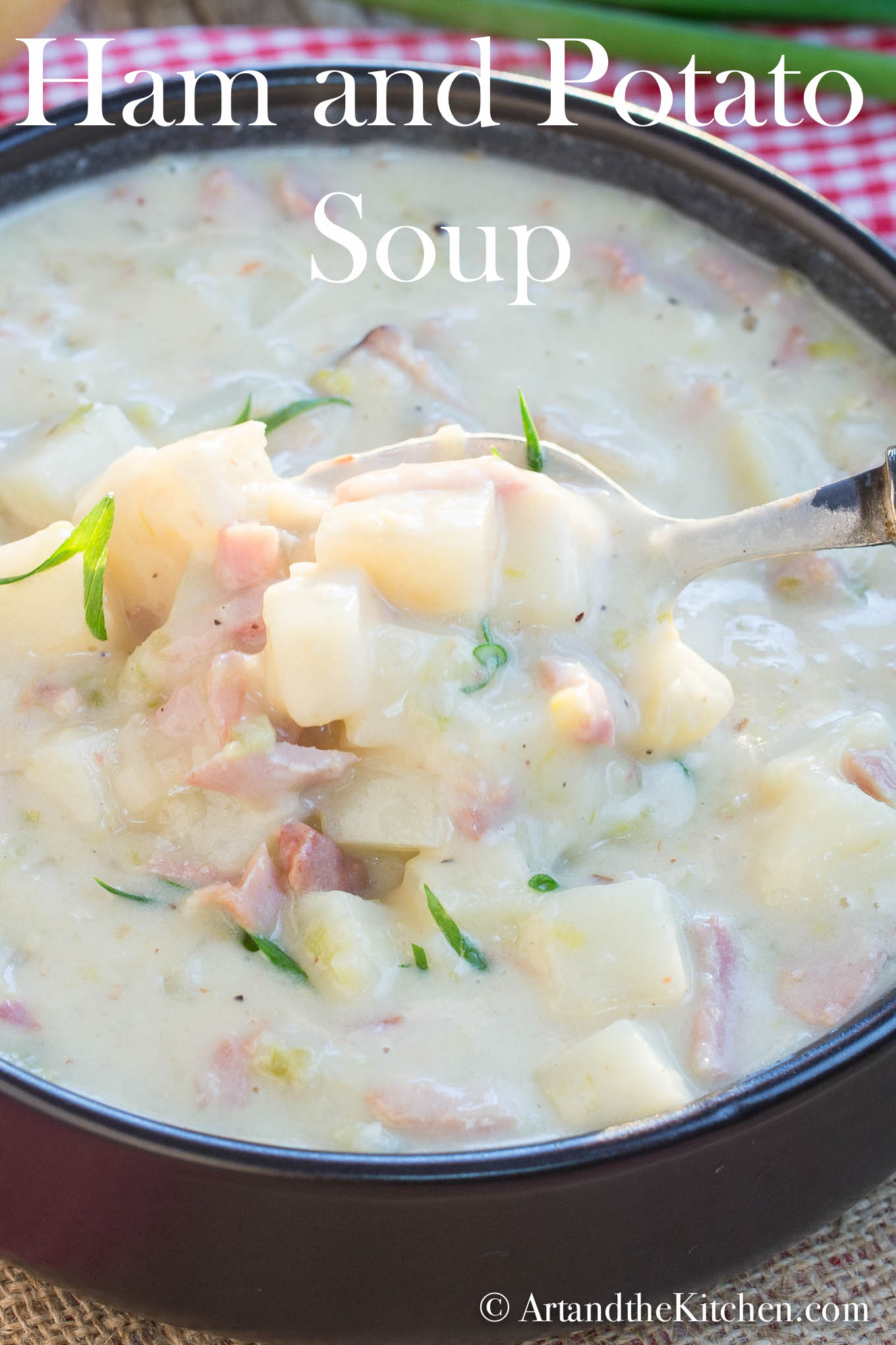 My Ham and Potato Soup recipe has a rich and creamy texture without the use of cream. It is perfectly seasoned with leeks, onion, celery and a bit of garlic. #hamsoup #potatosoup #soup via @artandthekitch