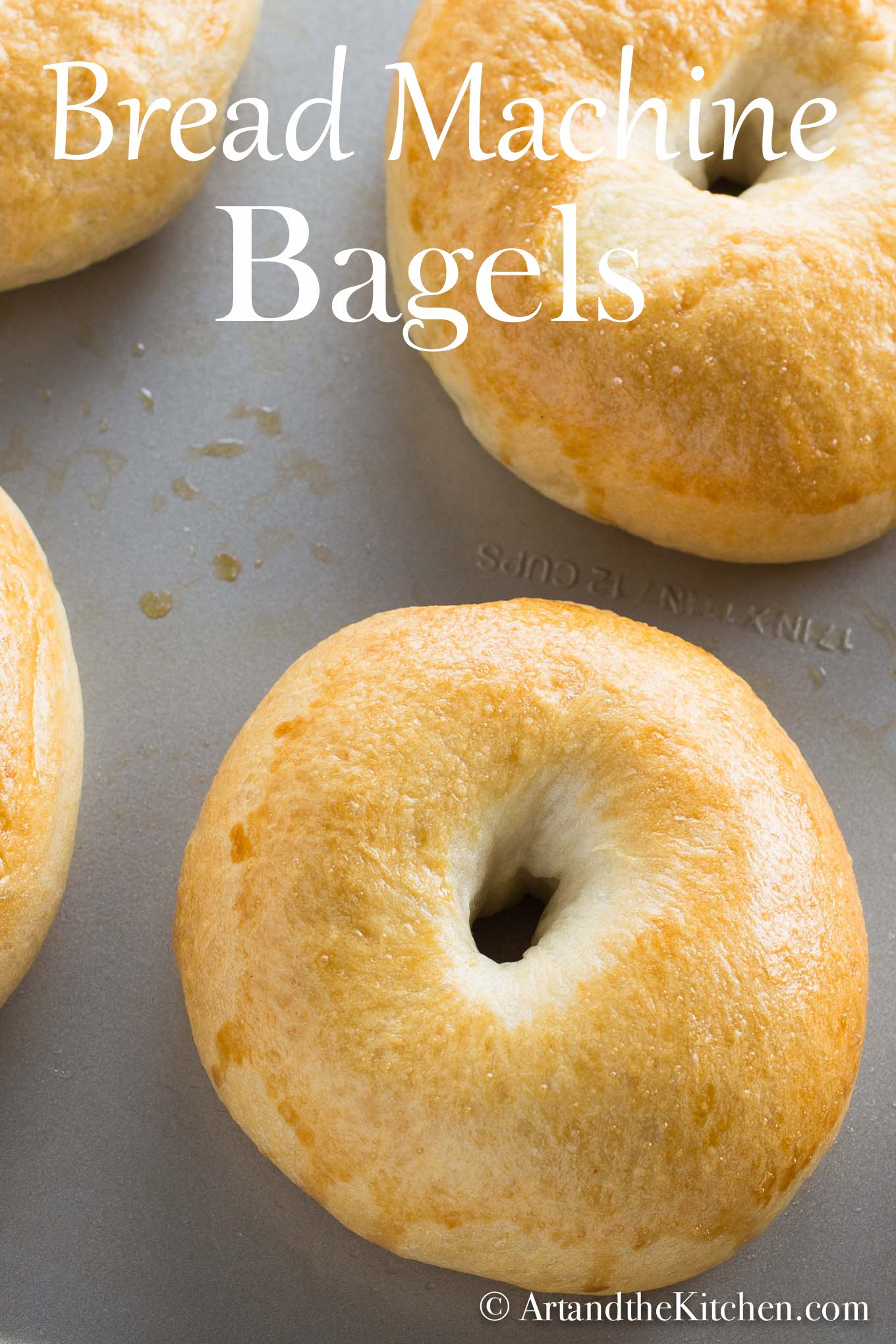 fresh baked, golden brown bagels on baking sheet. Made using a bread machine.
